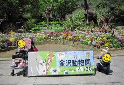 o0640048013926343673 242x166 - ★4月30日(日)★toiro東戸塚