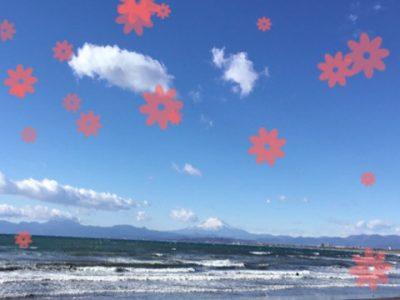 o0480037214100086250 400x300 - toiro ♪戸塚